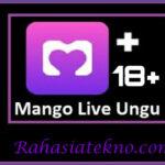 Cara Jadi Host di Mango Live Untuk Pengguna Baru